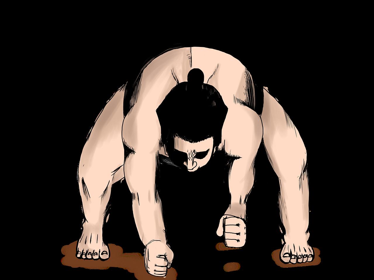 相撲技 なのです